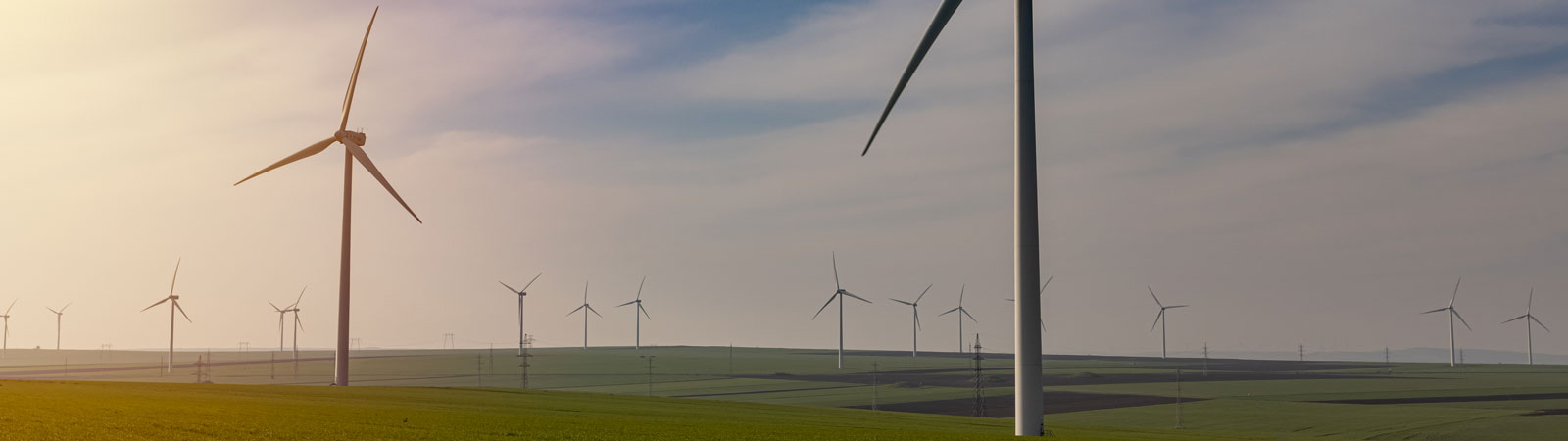 Green Energy - Field and Wind Turbines at Sunset